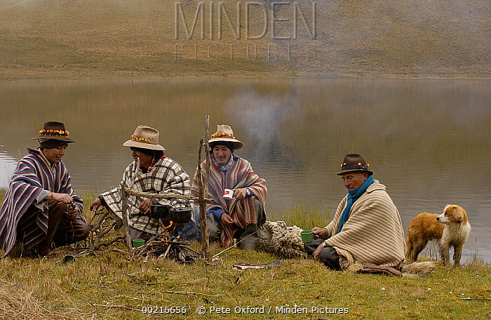 Chagra cowboys with Mountain roses in the bands of their hats preparing to cook trout over a fire at a hacienda during the annual overnight cattle round-up, Andes Mountains, Ecuador  -  Pete Oxford