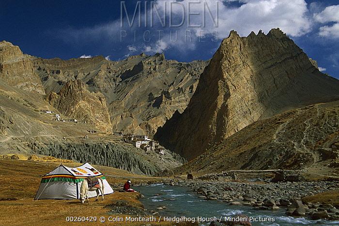 Trekker writes in diary beside Tibetan tent, Photoskar village, Ladakh, Himalayas, northwest India  -  Colin Monteath/ Hedgehog House