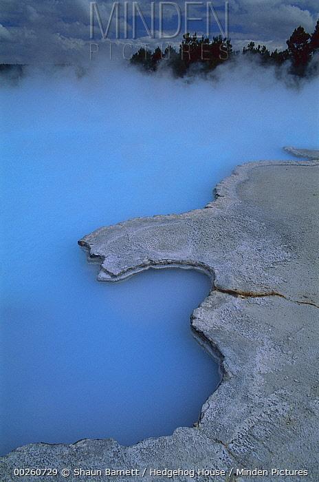 Ohaaki Pool, thermal district near Taupo, New Zealand  -  Shaun Barnett/ Hedgehog House