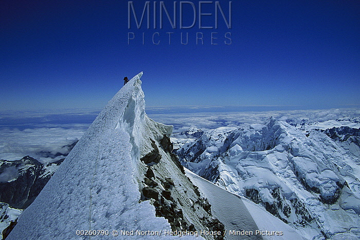 Climber on summit of Mount Cook, Mount Cook National Park, New Zealand  -  Ned Norton/ Hedgehog House