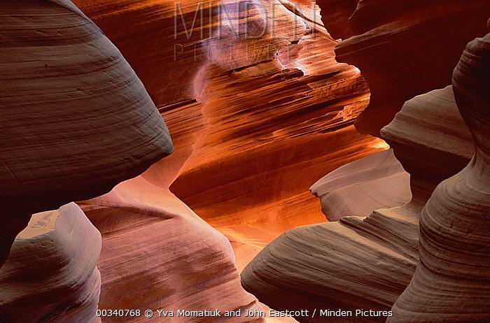 Slot Canyon sculpted by rushing water, sand, boulders and frost, Arizona  -  Yva Momatiuk & John Eastcott