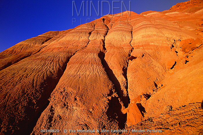 Layered sandstone ridge beginning to erode, Chinle formation, Grand Staircase-Escalante National Monument, Utah  -  Yva Momatiuk & John Eastcott