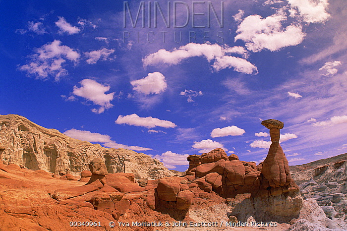 Toadstool Caprocks against petrified sand dunes, cliffs, boulders and hoodoos, near Paria River, Grand Staircase-Escalante National Monument, Utah  -  Yva Momatiuk & John Eastcott