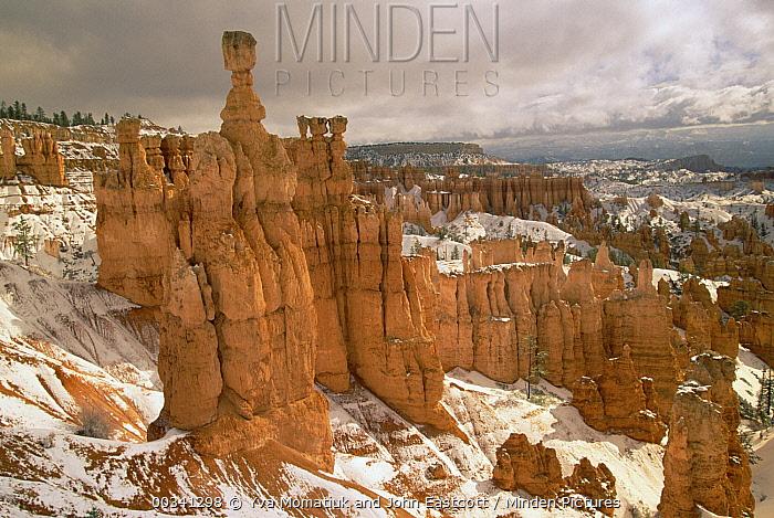 Erosional formations called fins and hoodoos, after spring snowfall, Bryce Canyon National Park, Utah  -  Yva Momatiuk & John Eastcott