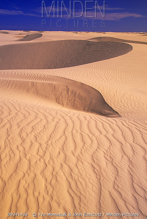 Gypsum sand dunes in the morning light, patterns and ridges caused by wind, White Sands National Monument, New Mexico  -  Yva Momatiuk & John Eastcott