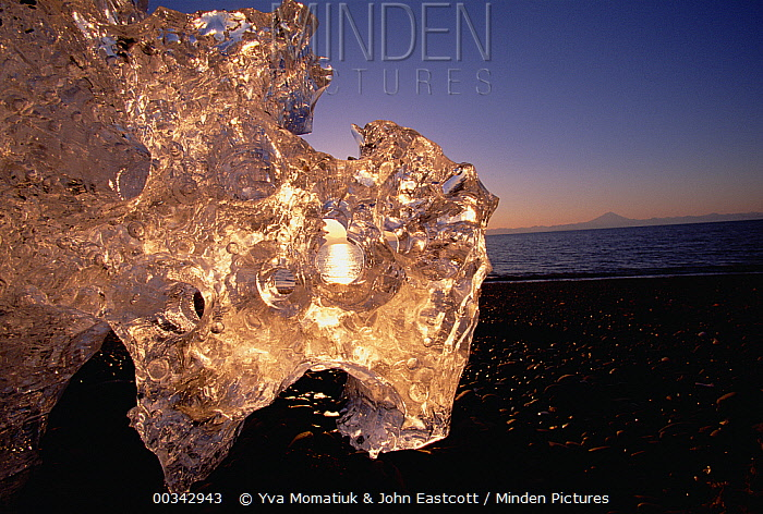 Ice on beach, in evening early spring, Kenai Peninsula, Alaska  -  Yva Momatiuk & John Eastcott