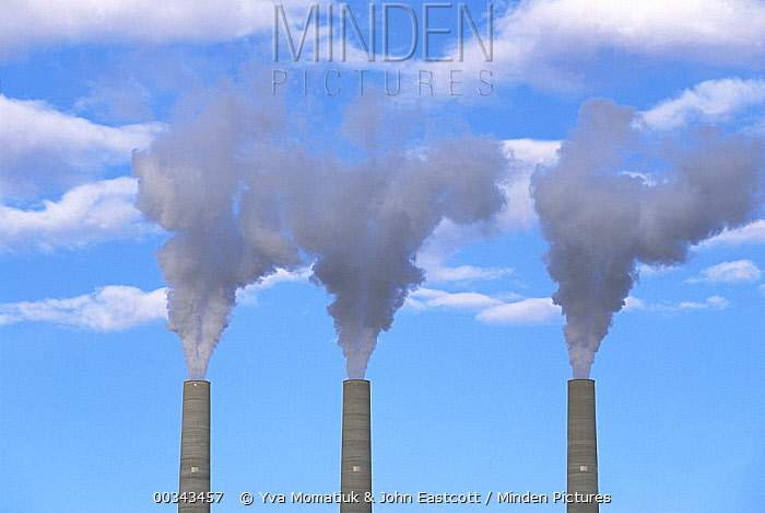 Smokestacks spewing smoke, Navajo generating station near Page, Arizona  -  Yva Momatiuk & John Eastcott