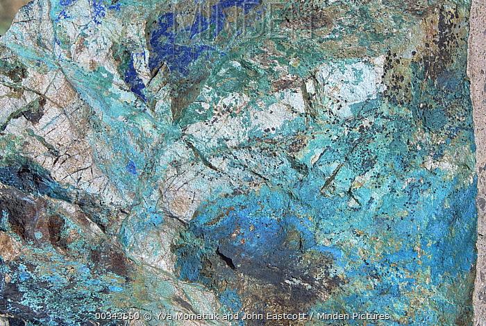 Copper ore, shines green on rock, Arizona-Sonora Desert Museum, Arizona  -  Yva Momatiuk & John Eastcott