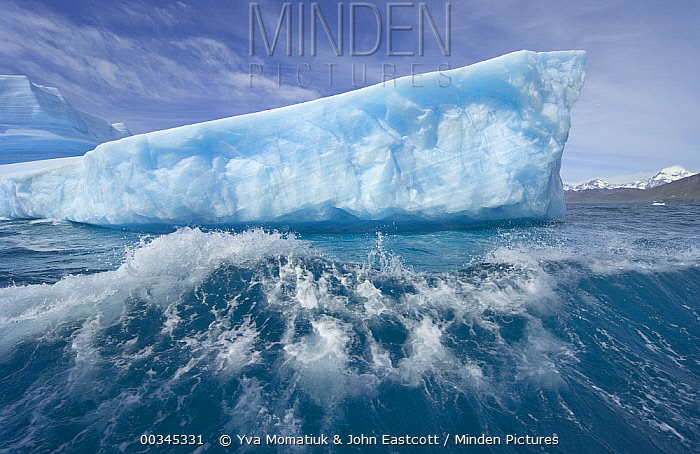 Massive iceberg floating, smashing into waves and melting rapidly due to gobal warming and rising temperatures of sea and air, near Cumberland Bay, South Georgia Island, Southern Ocean, Antarctic Convergence  -  Yva Momatiuk & John Eastcott