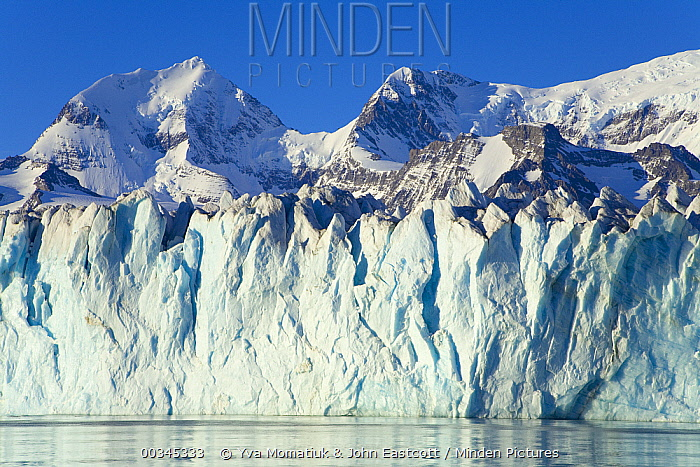 Nordenskjold Glacier, Cumberland East Bay, South Georgia Island, Southern Ocean, Antarctic Convergence  -  Yva Momatiuk & John Eastcott