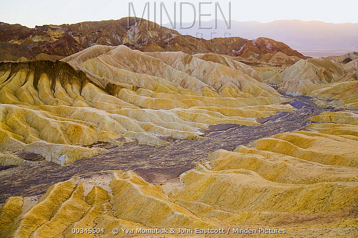 Colorful badlands, Zabriskie Point, Death Valley National Park, California  -  Yva Momatiuk & John Eastcott