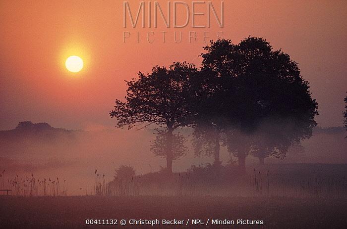 Sunrise at River Lower, Saxony, Germany  -  Christoph Becker/ npl