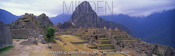Machu Picchu, Cuzco, Peru  -  David Tipling/ npl
