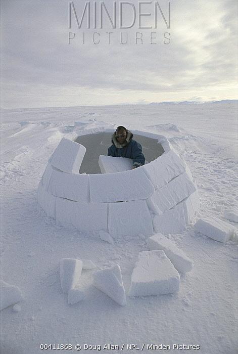 Inuit, Isaac Shooyuk, builing igloo, Admiralty Inlet, Baffin Island, Canada, Sequence  -  Doug Allan/ npl