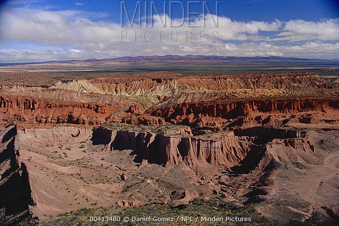 Aerial view of badlands, Talampaya National Park, western Argentina  -  Daniel Gomez/ npl