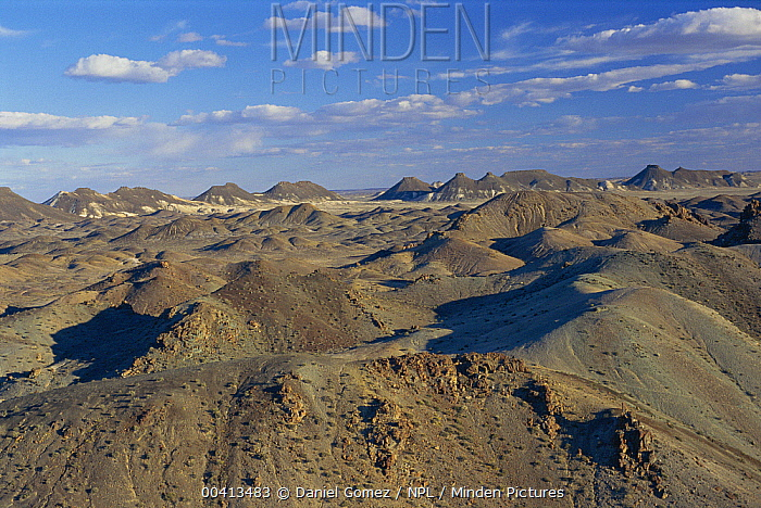 Aerial view of badlands, Petrified Forest National Monument, Patagonia, Argentina  -  Daniel Gomez/ npl