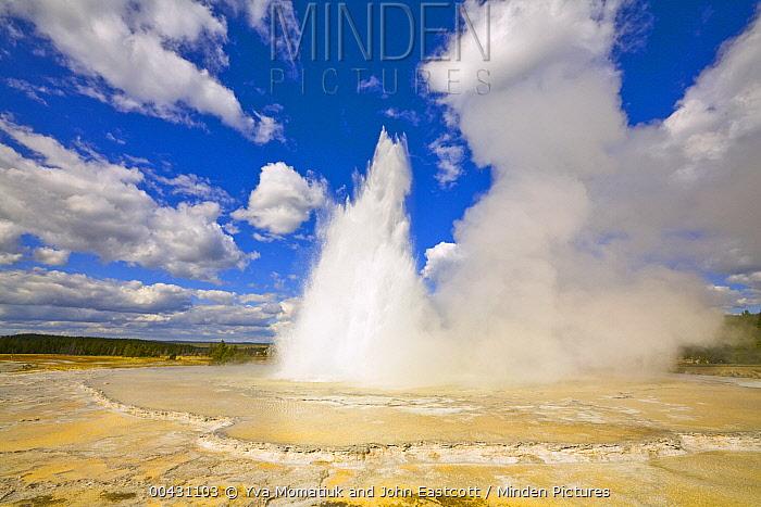 Great Fountain Geyser erupting, Yellowstone National Park, Wyoming  -  Yva Momatiuk & John Eastcott