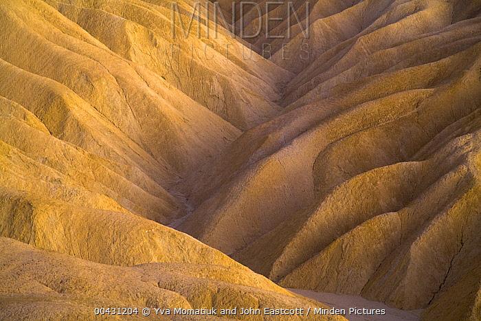 Eroded sandstone ridges near Zabriskie Point, Death Valley National Park, California  -  Yva Momatiuk & John Eastcott