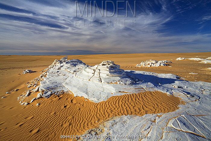 Gypsum crystal in sand dunes, Erg Murzuq, Libya  -  Konrad Wothe
