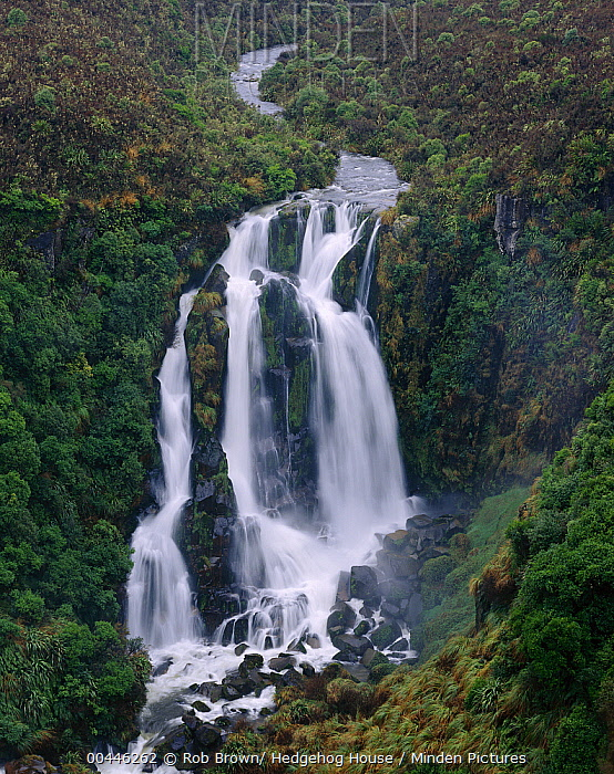 Waipunga Falls near Taupo, North Island, New Zealand  -  Rob Brown/ Hedgehog House