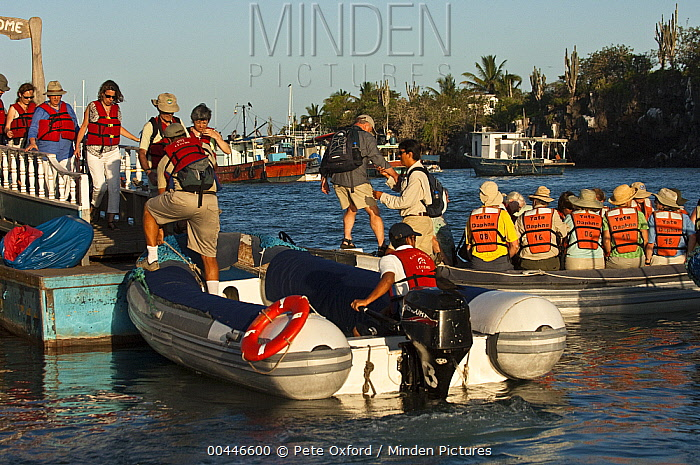 Tourists on municipal dock boarding zodiac boats, Puerto Ayora, Santa Cruz Island, Galapagos Islands, Ecuador  -  Pete Oxford