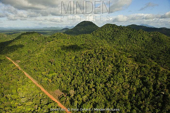 Road runnning through rainforest, Iwokrama Rainforest Reserve, Guyana  -  Pete Oxford