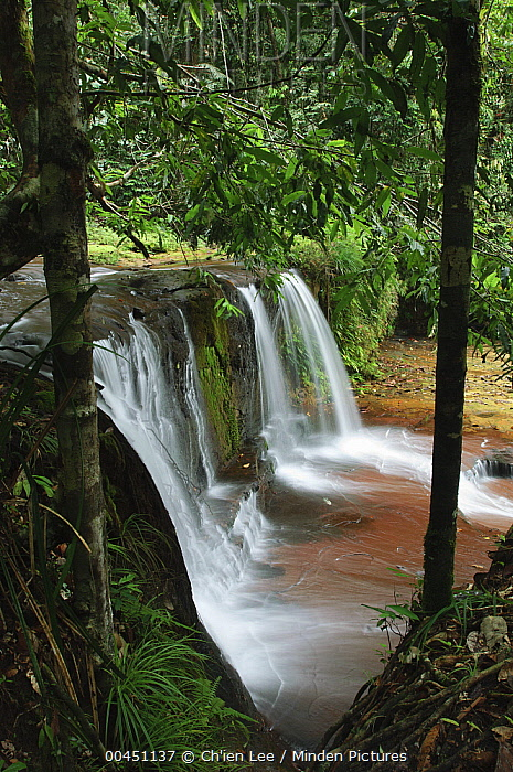 Waterfalls cascading over layered beds of sandstone, Lambir Hills National Park, Malaysia  -  Ch'ien Lee