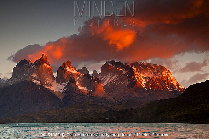 Cuernos del Paine at dawn above Lago Pehoe, Torres Del Paine National Park, Patagonia, Chile  -  Colin Monteath/ Hedgehog House