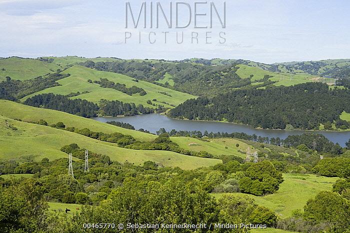 Briones Reservoir and powerlines in oak savanna covered hillsides, Berkeley, California  -  Sebastian Kennerknecht