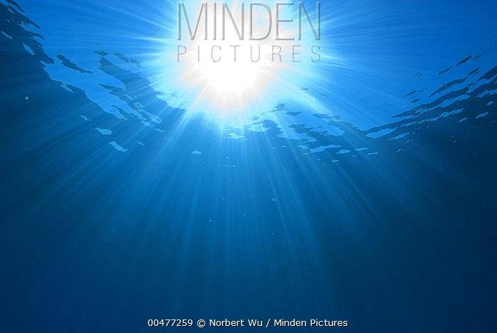 Sunlight shining through water, Caribbean Sea, Dominica  -  Norbert Wu