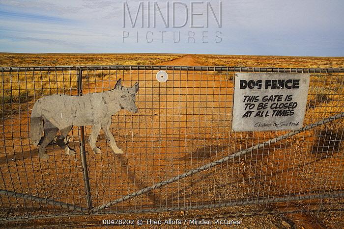 Gate at dingo fence, South Australia, Australia  -  Theo Allofs