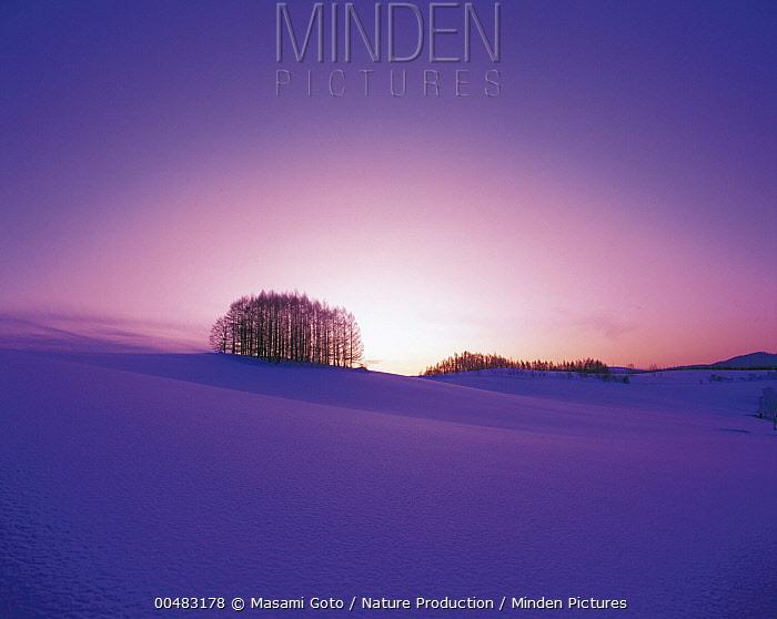 Setting sun over snowy landscape, Hokkaido, Japan  -  Masami Goto/ Nature Production