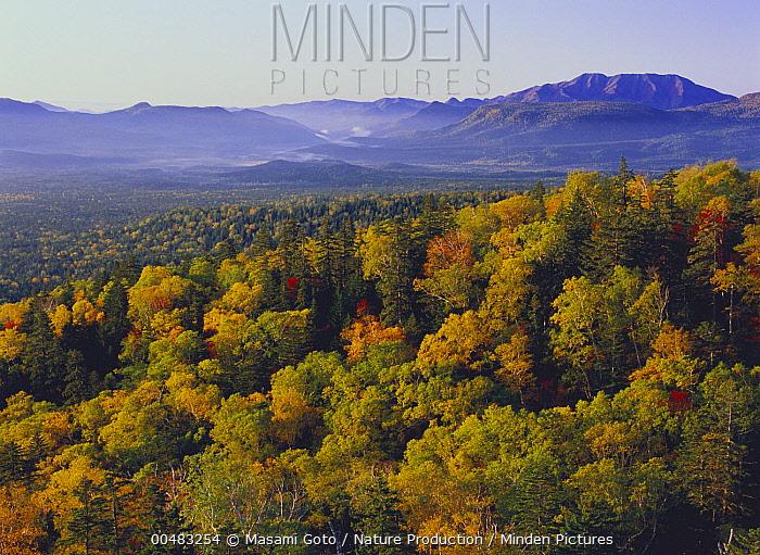 Mikuni Pass in autumn, Hokkaido, Japan  -  Masami Goto/ Nature Production