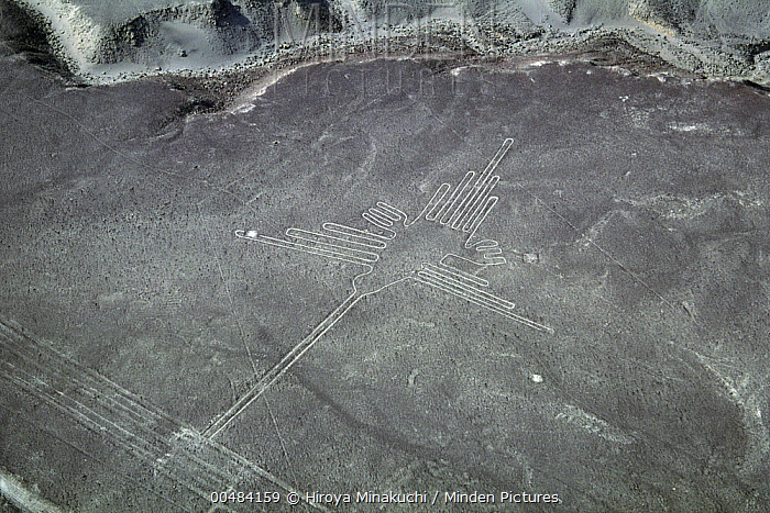 Nazca Lines, Peru  -  Hiroya Minakuchi/ Nature Product