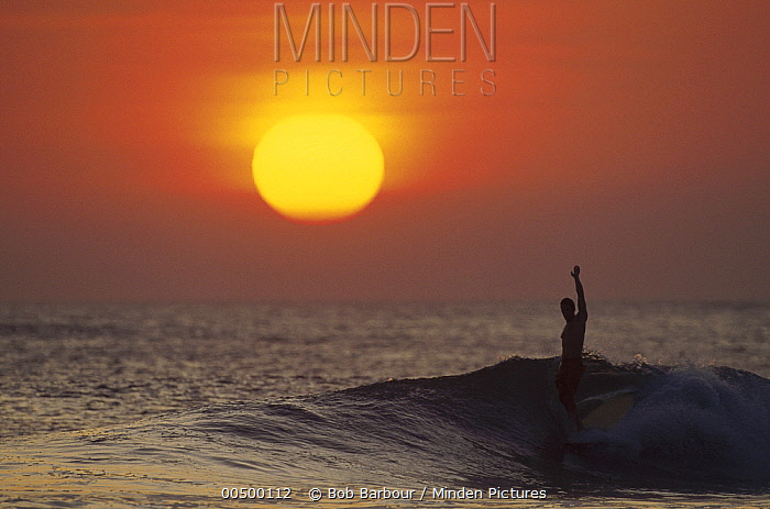 Surfer known as 'Wingnut, ' Costa Rica  -  Bob Barbour