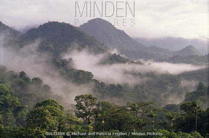 Misty morning over tropical rainforest in Penas Blancas Valley, Costa Rica  -  Michael & Patricia Fogden
