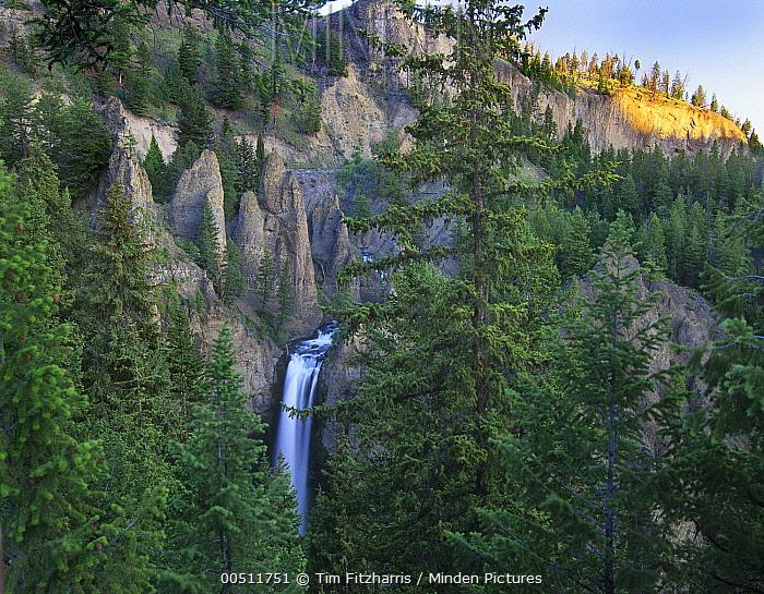 Tower Fall, Yellowstone National Park, Wyoming  -  Tim Fitzharris