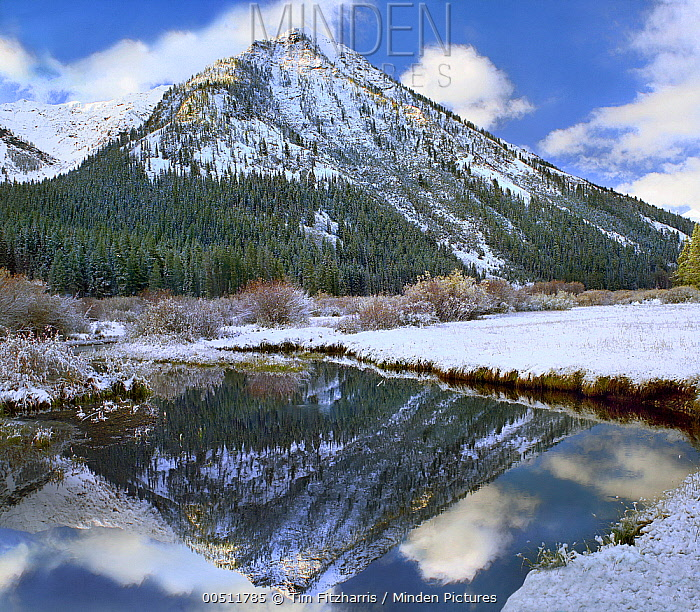 Phi Kappa Mountain and Summit Creek, Idaho  -  Tim Fitzharris