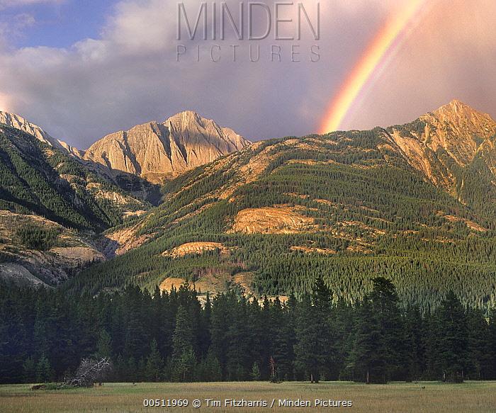 Rainbow over Colin Range, Jasper National Park, Alberta, Canada  -  Tim Fitzharris
