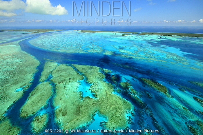 Aerial view of tidal channels in coral which feed central lagoon, Aldabra, Seychelles  -  Wil Meinderts/ Buiten-beeld