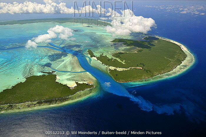 Aerial view of tidal channels feeding central lagoon of raised coral atoll with seawater, Aldabra, Seychelles  -  Wil Meinderts/ Buiten-beeld