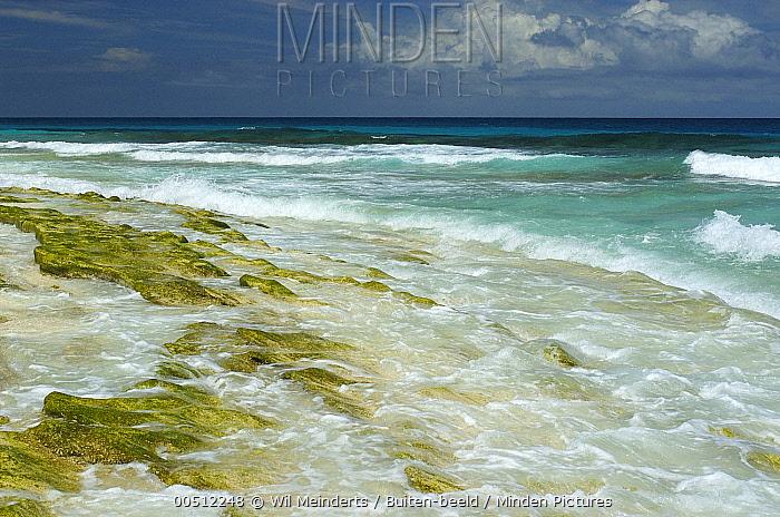 Waves reaching shore, Cousin Island, Seychelles  -  Wil Meinderts/ Buiten-beeld