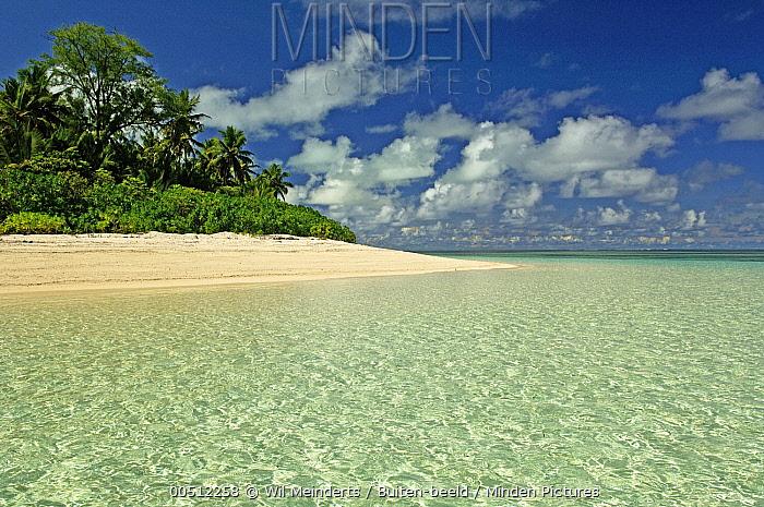 Palm lined beach, Bijoutier Island, Seychelles  -  Wil Meinderts/ Buiten-beeld