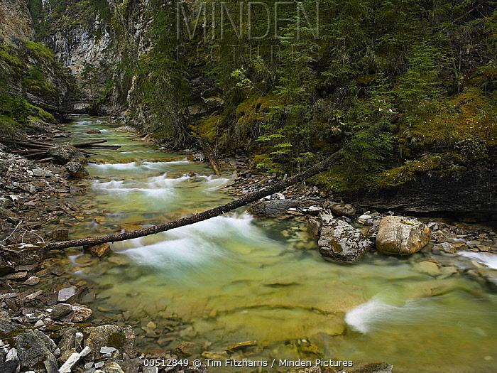 Creek in Johnston Canyon, Banff National Park, Alberta, Canada  -  Tim Fitzharris
