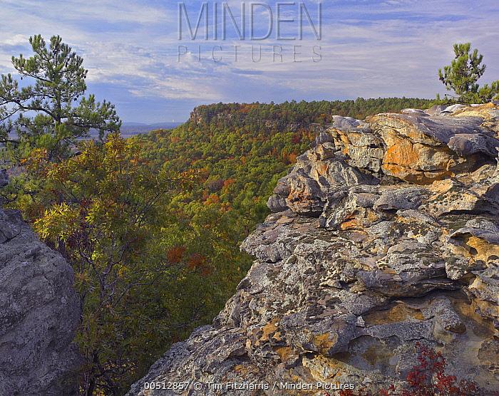 Cedar Canyon, Petit Jean State Park, Arkansas  -  Tim Fitzharris