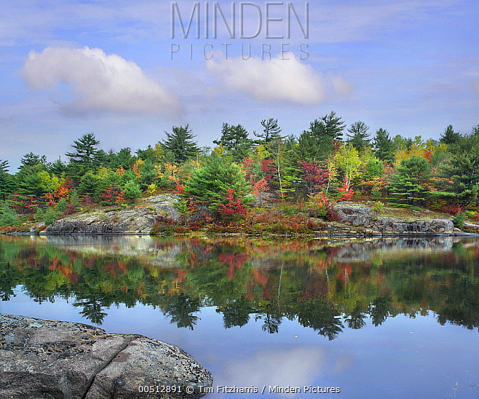 French River, Ontario, Canada  -  Tim Fitzharris