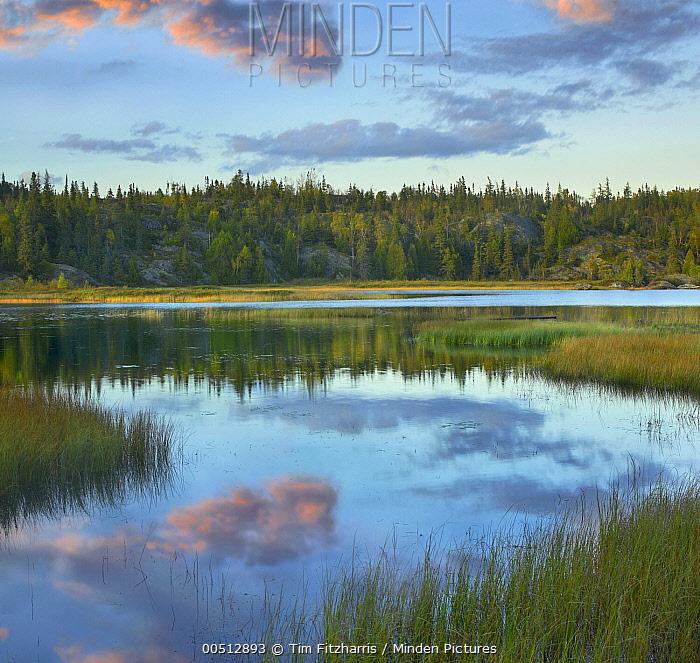Halfway Lake, Pukaskwa National Park, Ontario, Canada  -  Tim Fitzharris