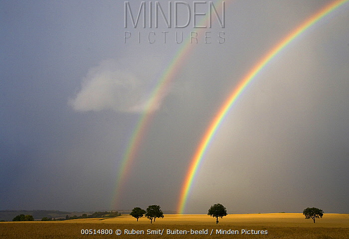 Double rainbow over grain field, Auvergne, France  -  Ruben Smit/ Buiten-beeld