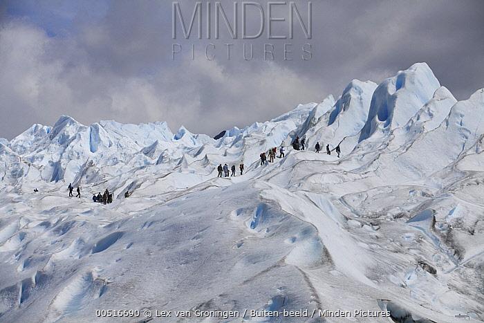 Perito Moreno Glacier, Parque Nacional Los Glaciares, Argentina  -  Lex van Groningen/ Buiten-beeld