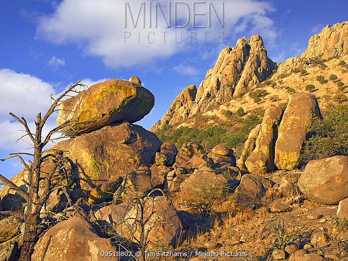 Rockpile, Davis Mountains, Chihuahuan Desert, Texas  -  Tim Fitzharris